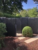 kleiner Vorgarten und Hauszugang